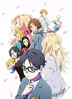 Твоя апрельская ложь / Shigatsu wa Kimi no Uso / Your Lie in April DVD