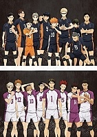Волейбол!! ТВ-3 / Haikyuu!! TV-3